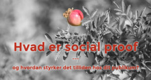 Hvad er social proof